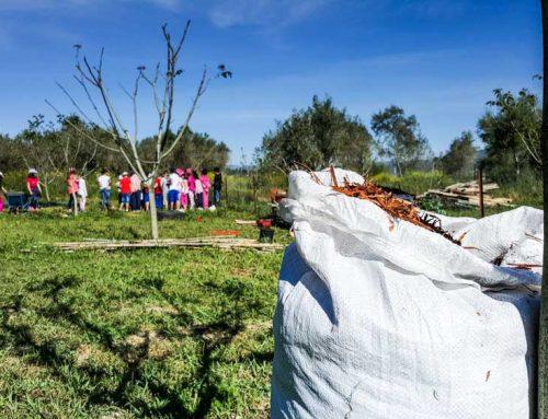 Αγρόκτημα Βιωματικής Εκπαίδευσης και Τεχνών «Χώρα» – Πρόγραμμα 2017-18
